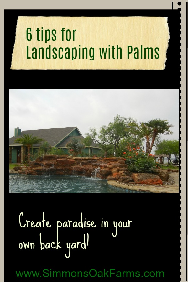 Landscaping with Palms